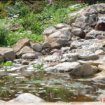 Строительство пруда с водопадом