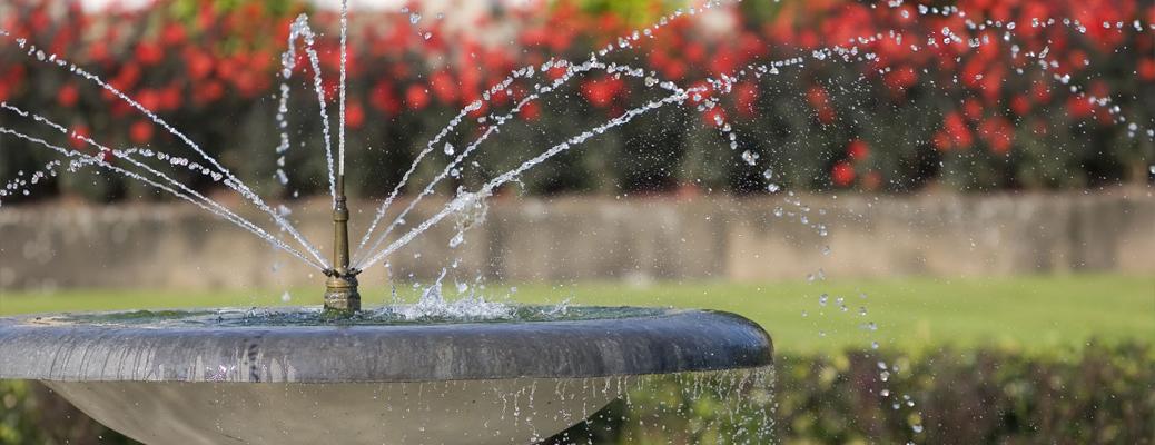 Заказать строительство декоративного пруда с фонтаном