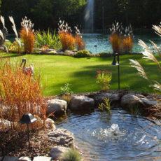 Как купить декоративный пруд и избежать «подводных камней»?