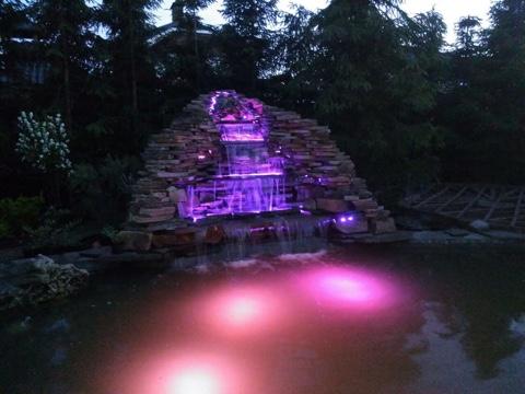 строительство пруда с подсветкой