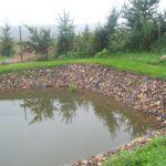 пруд с укреплением берегов габионами